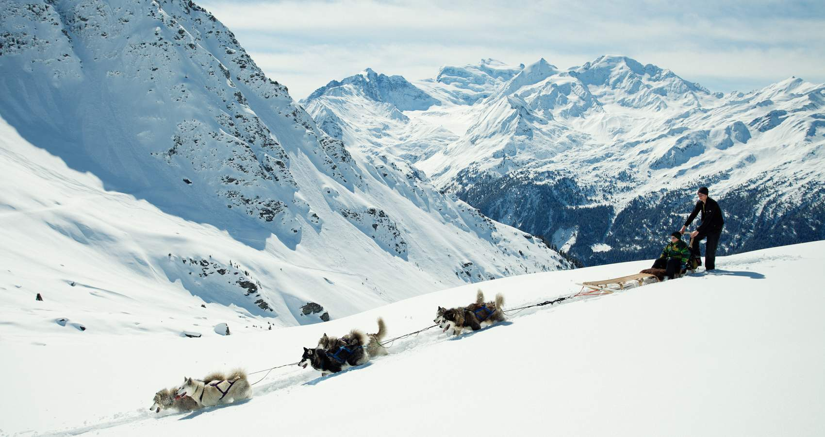 dog-sledding in verbier